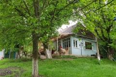 Ons lemen huis in het groen